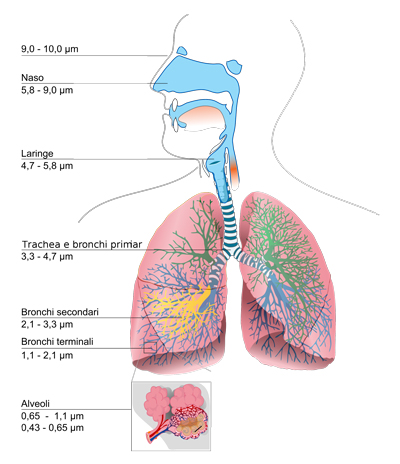 Richio inalazione polveri sottili del filtro anti particolato